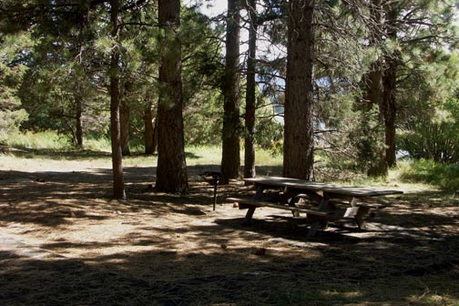 The Meadows Edge picnic area on the Big Bear Lake shore line is a great place for lunch.