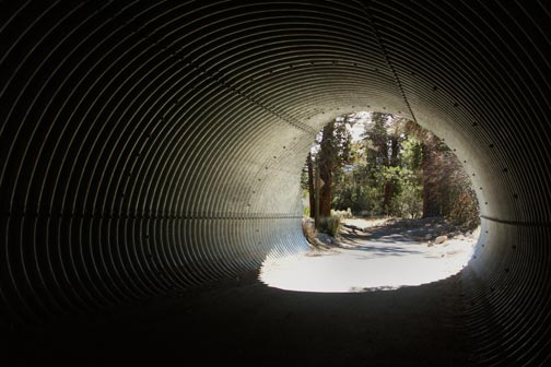 The Cougar Crest trail as it crosses under highway 18.