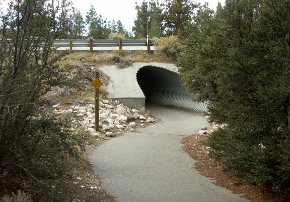 The Cougar Crest trail connects with the Alpine Pedal Path via this short paved trail that passes under Highway 18.