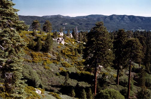 Big Bear Lake can be seen in the distance from the top of Skyline Drive © Rick Keppler