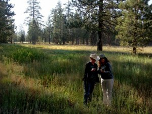 Jeanne and Sue, closing in on their next find, on an early morning trek in the Big Bear Wilderness